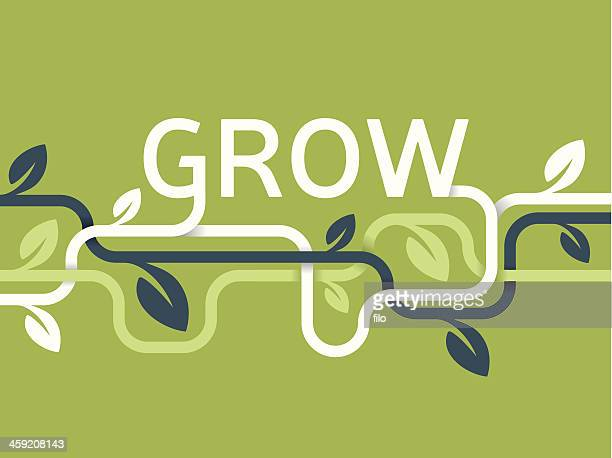 grow vines background - vine stock illustrations