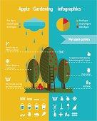 Growing Apple Garden Infographics Elements