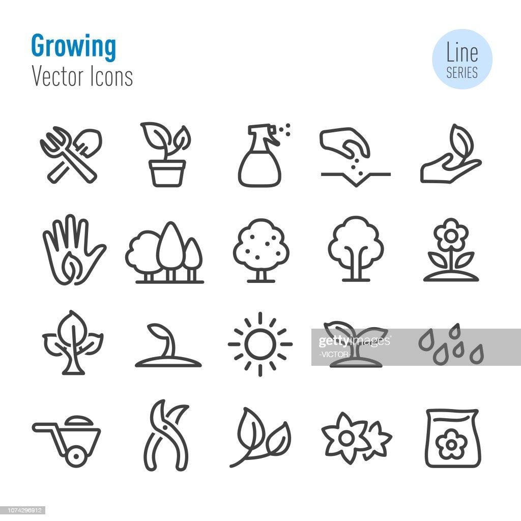 Icone in crescita - Vector Line Series : Illustrazione stock