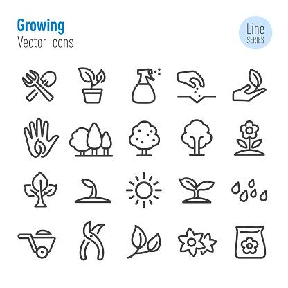 Growing Icons - Vector Line Series - gettyimageskorea