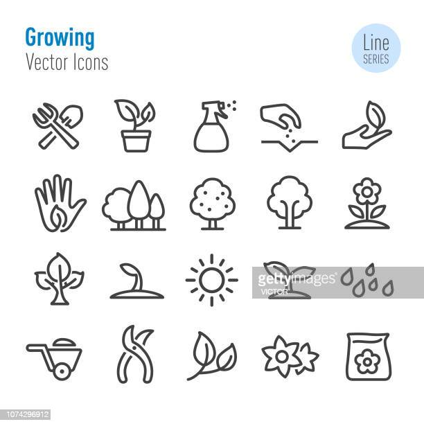stockillustraties, clipart, cartoons en iconen met groeiende icons - vector line serie - bloem plant