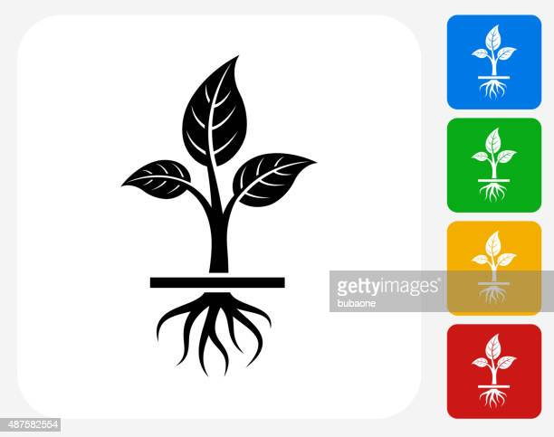 growing plant icon flat graphic design - root stock illustrations, clip art, cartoons, & icons
