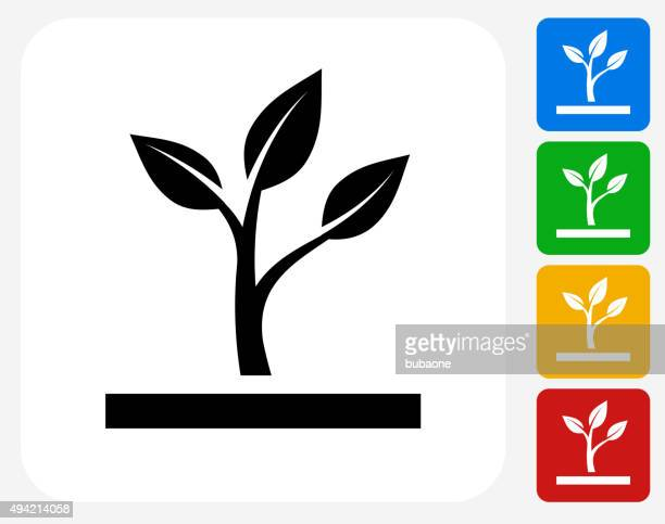 growing plant icon flat graphic design - seedling stock illustrations