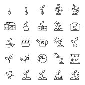 Growing plants. Sprout in the ground. Farming and gardening, icon set. Sprout care, linear icons. Plant in the ground, greenhouse and hydroponic systems. Editable stroke