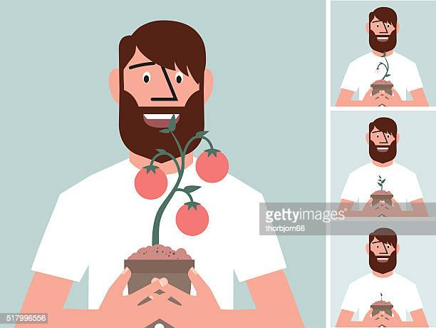 Crescita di pomodori