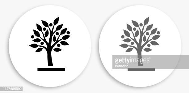 illustrazioni stock, clip art, cartoni animati e icone di tendenza di icona rotonda in bianco e nero dell'albero in crescita - albero