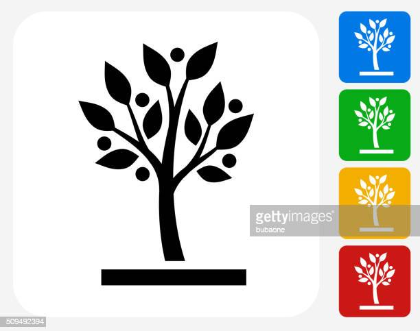 growing tree icon flat graphic design - tree stock illustrations