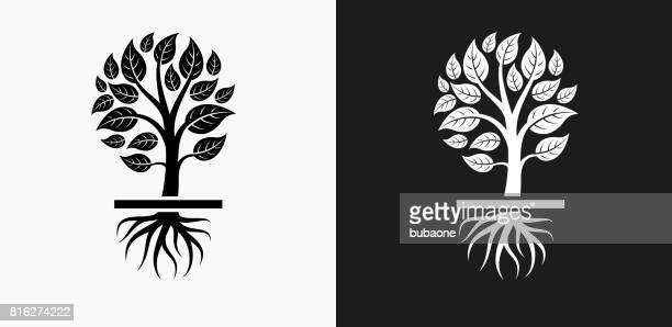 Growing Tree Icon on Black and White Vector Backgrounds