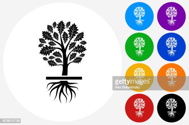 growing tree icon on flat color circle buttons - root stock-grafiken, -clipart, -cartoons und -symbole