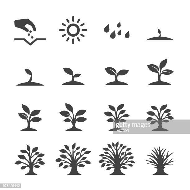 growing tree icons - acme series - cultivated stock illustrations