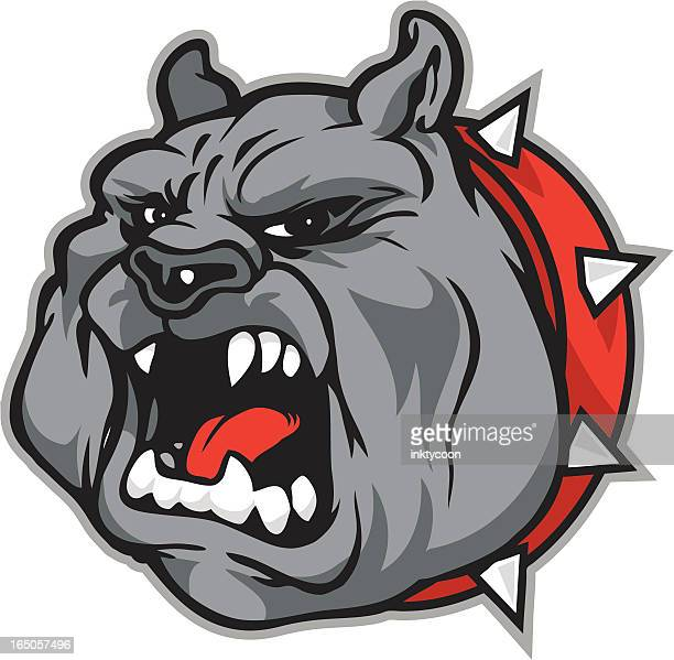 growling bulldog - agression stock illustrations, clip art, cartoons, & icons