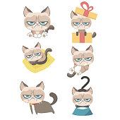 Grumpy cat set.