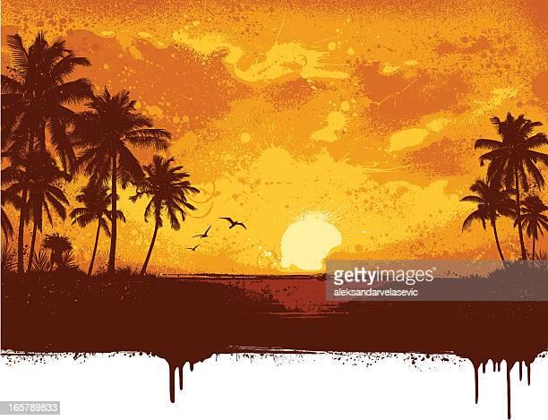 ilustrações, clipart, desenhos animados e ícones de fundo grunge da praia - cocos plant