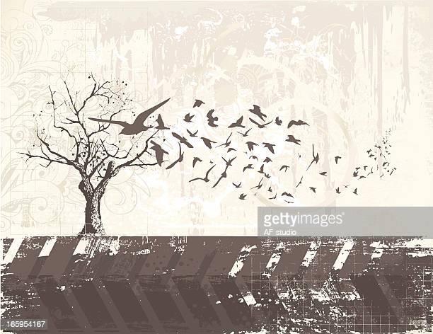 Grunge Birds