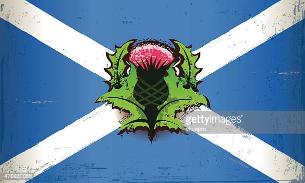 grunge flag of scotland with a thistle flower - thistle stock illustrations, clip art, cartoons, & icons