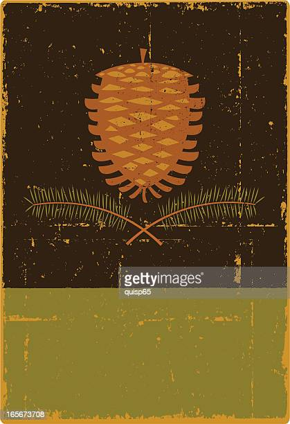 grunge pine cone sign - pine cone stock illustrations, clip art, cartoons, & icons