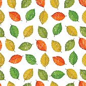 Grunge seamless pattern with colored leaves