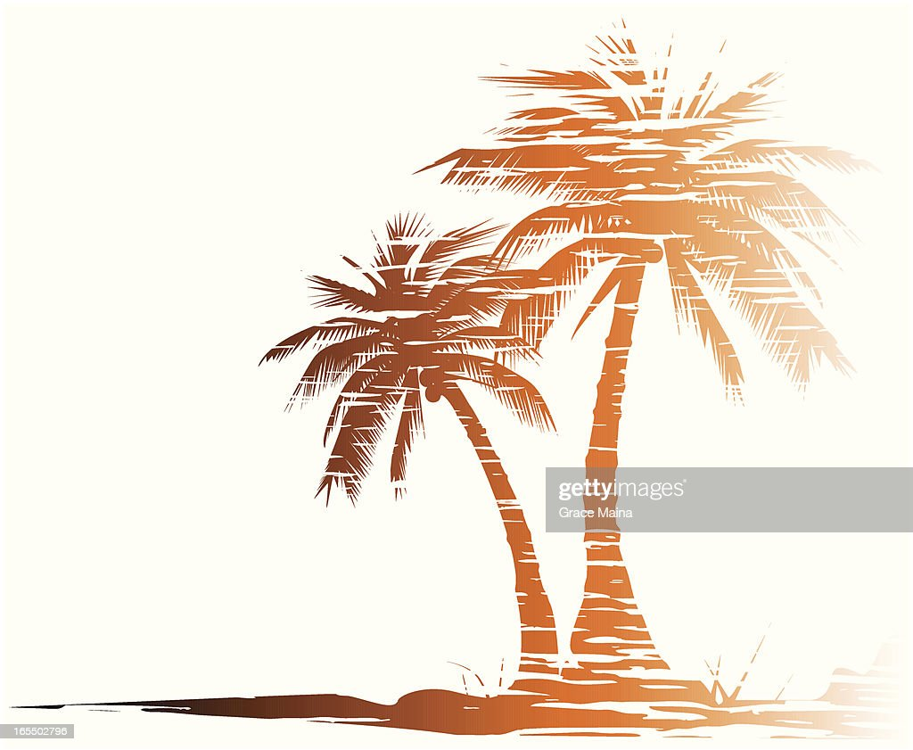 Grungy palm trees - VECTOR : stock illustration