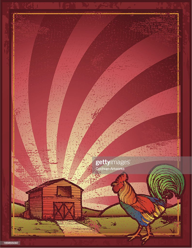 Grungy Rooster Frame With Barn Vector Art | Getty Images