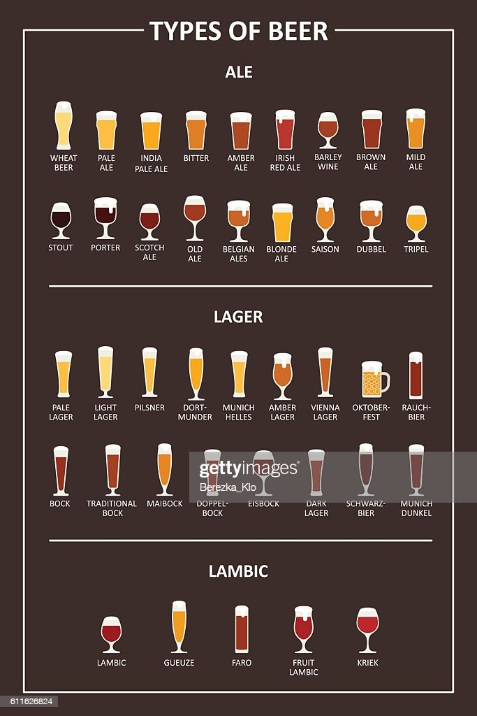 Guide to the types of beer.  Vector illustration