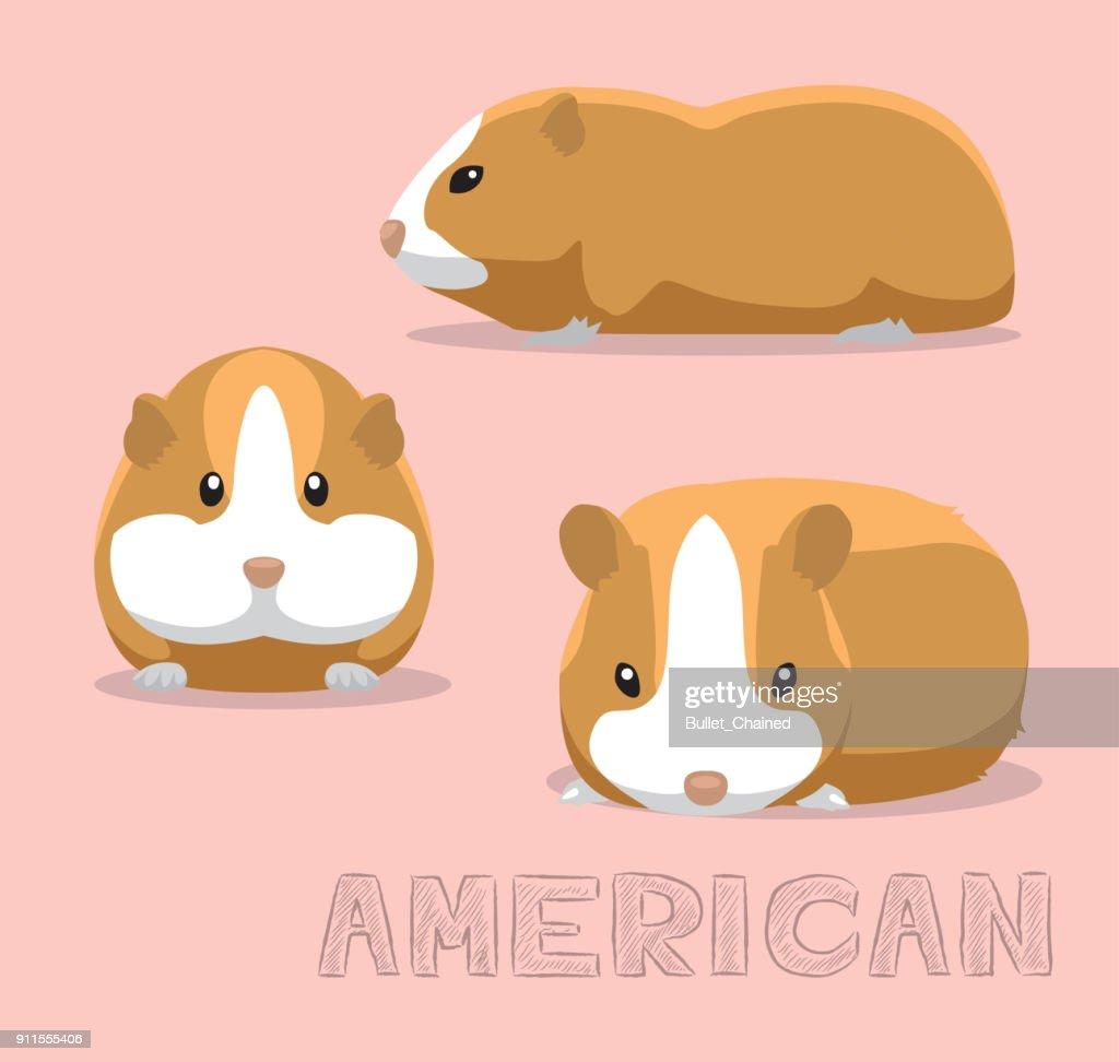 Guinea Pig American Cartoon Vector Illustration