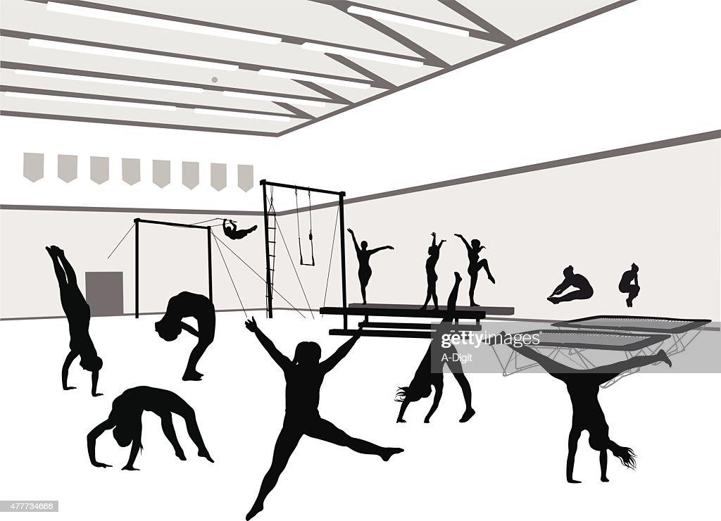 Gym And Gymnasts