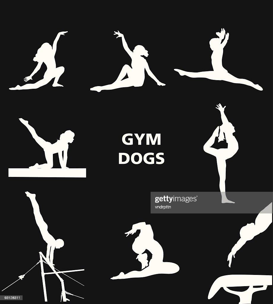 Gym Dogs : Stock Illustration