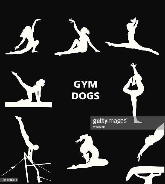 gym dogs - gymnastics stock illustrations, clip art, cartoons, & icons