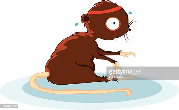 ilustraciones, imágenes clip art, dibujos animados e iconos de stock de gimnasio de rata - educacion fisica