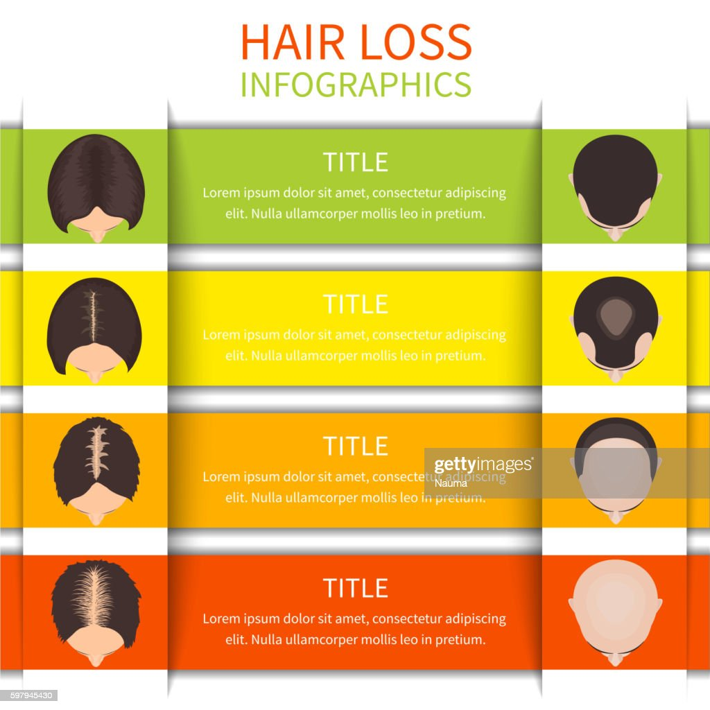 Hair loss infographic template