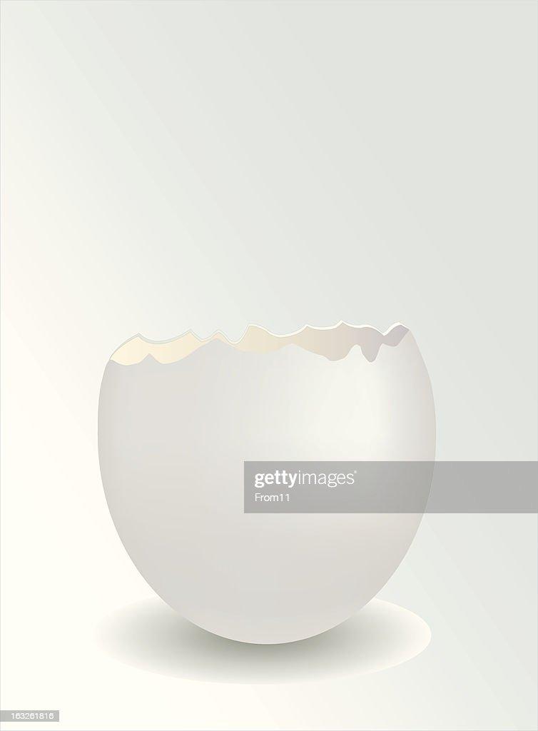 half of the eggs