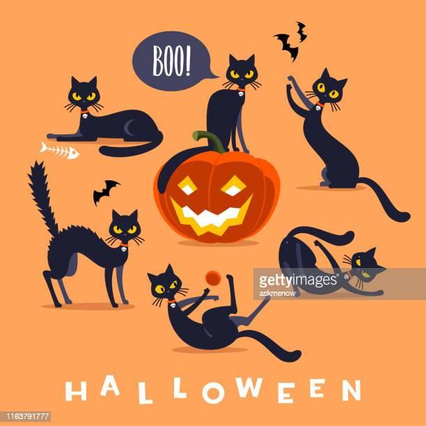 illustrations, cliparts, dessins animés et icônes de caractère noir de chat d'halloween - chat humour