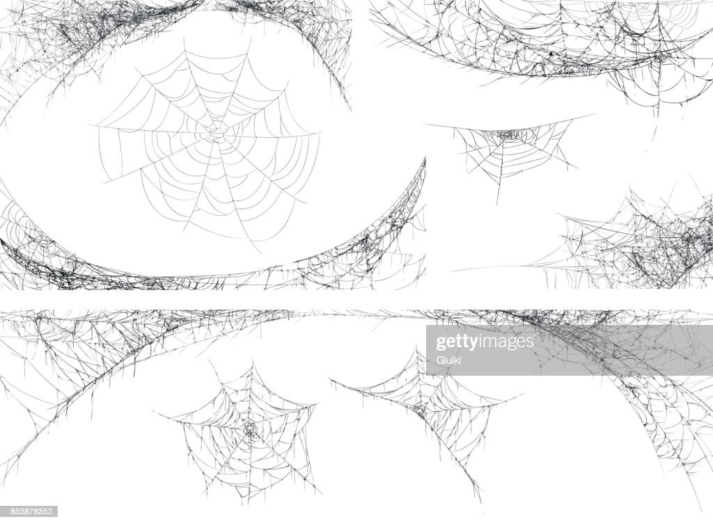 Halloween decor, spider cobweb, hand drawn vector illustration.