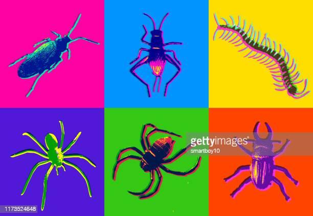 ilustrações de stock, clip art, desenhos animados e ícones de halloween insect icons - centopeia