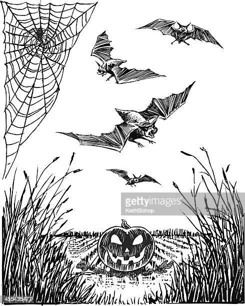 Halloween Jack-O-Lantern, Bat, Spider and Web