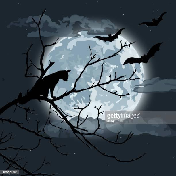 halloween night - halloween cats stock illustrations