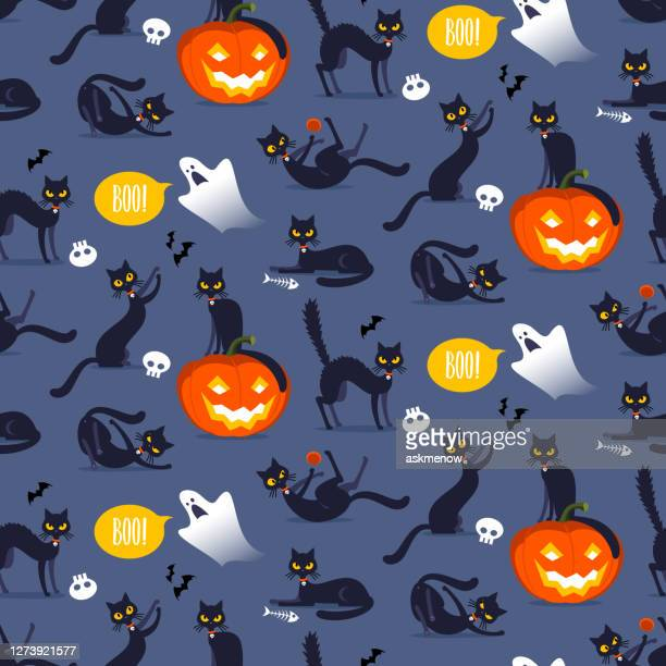 illustrations, cliparts, dessins animés et icônes de motif sans couture d'halloween - chat noir