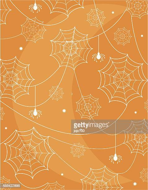 Halloween Spidersweb in the Moonlight