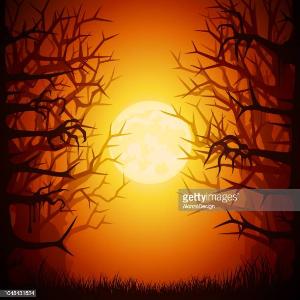 halloween spooky forest - tree trunk stock illustrations