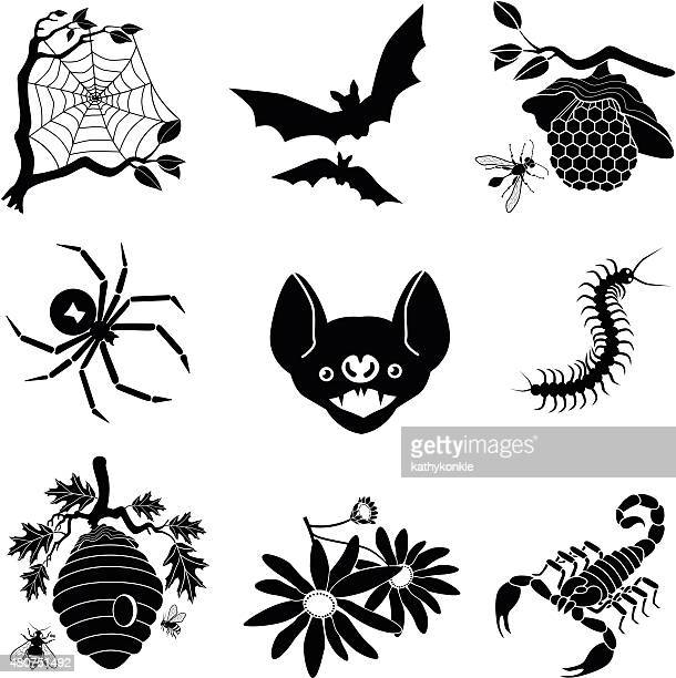 halloween vector icons in black and white - black widow spider stock illustrations, clip art, cartoons, & icons