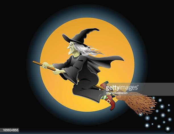 Halloween Witch In Flight