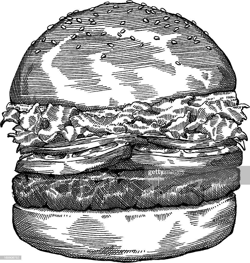 Hamburger de dibujo : Ilustración de stock