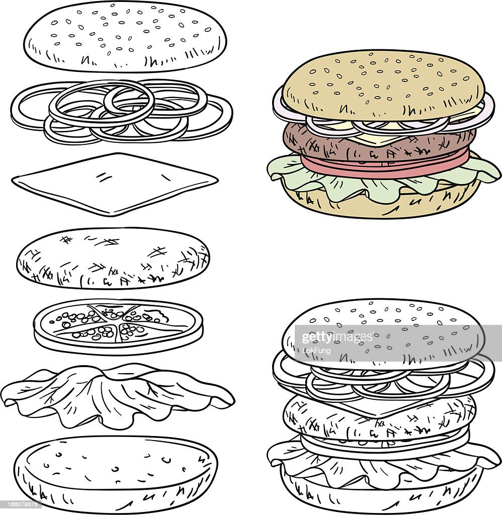 Hamburger ingredients in line art style : stock illustration