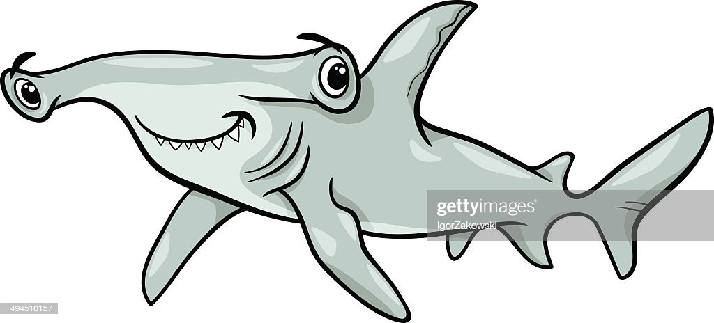 hammerhead shark cartoon illustration