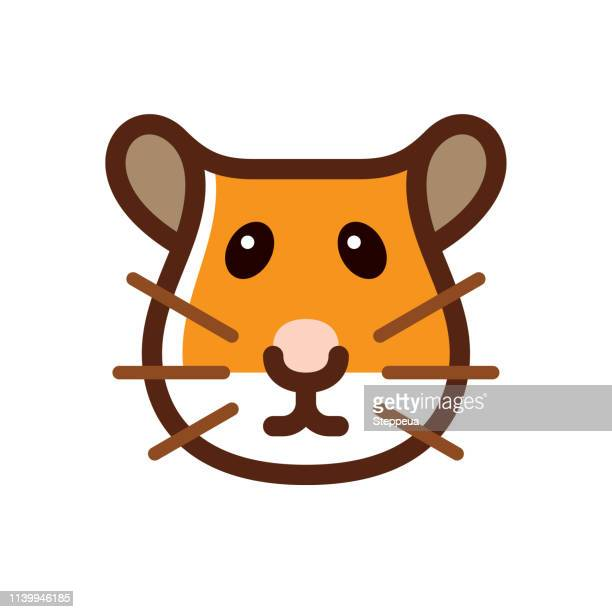 hamster - hamster stock illustrations