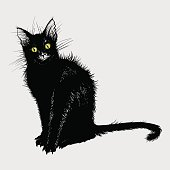 Hand drawing a black cat with green eyes.