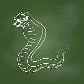 Hand drawing snake on Green board -Vector illustration