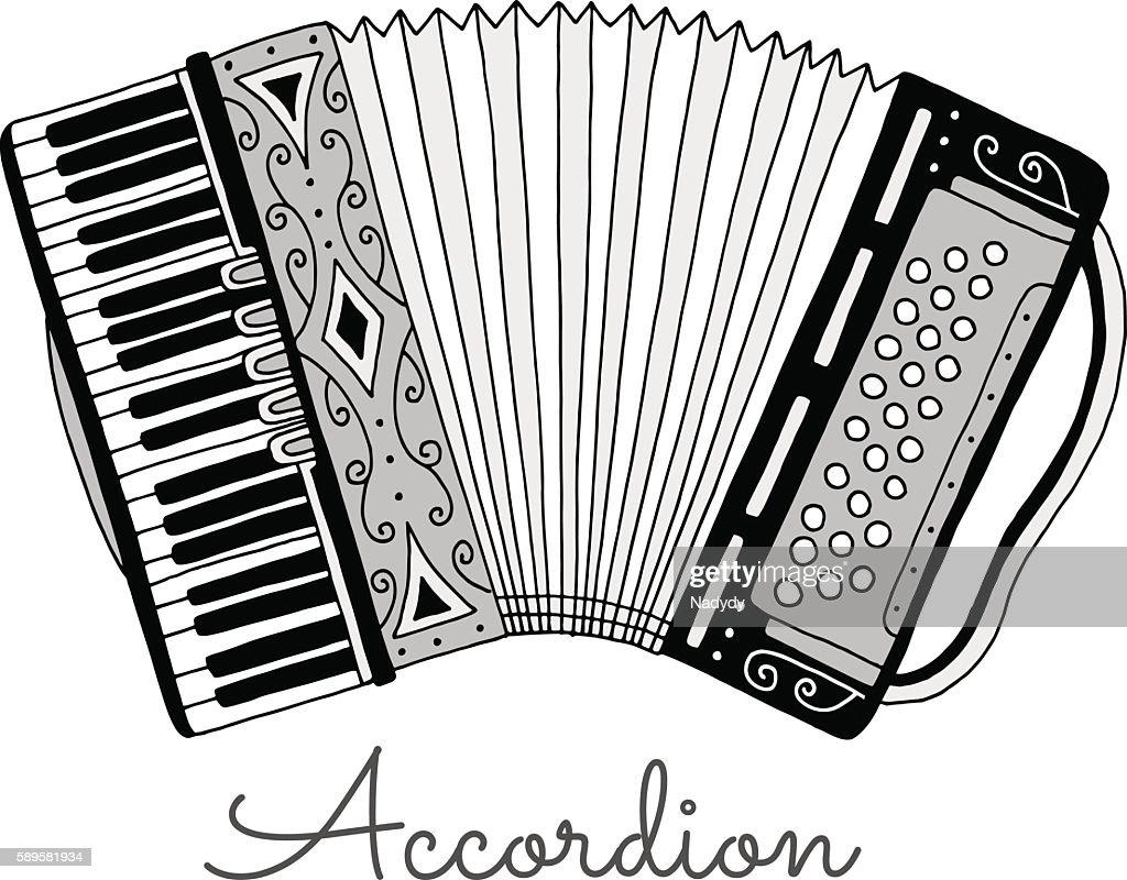 Hand drawn accordion vector illustration. Musical instrument