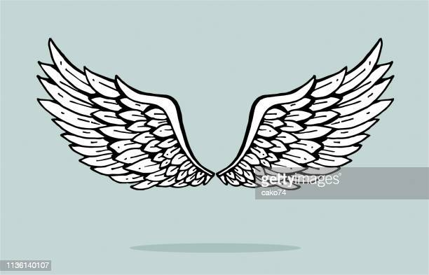 hand drawn angel wings - animal body part stock illustrations
