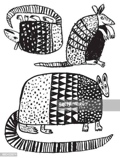 Hand drawn armadillo on white background